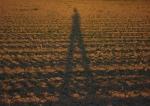 die_Schatten_werden_laenger